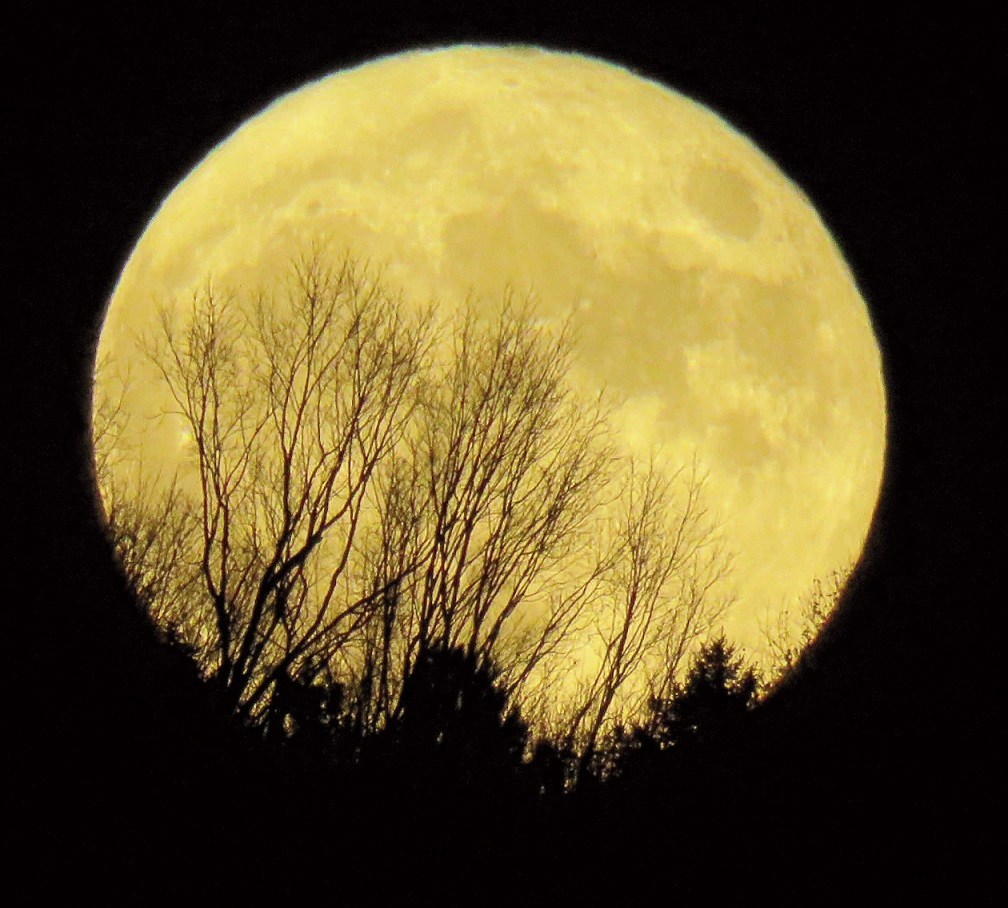 SUPER MOON: Tina Richard, of Clinton, was on the spot to get this photo of the Super Moon on Nov. 14.