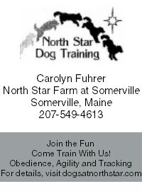 North Star Dog Training