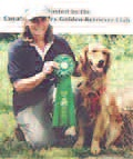 TRAINING YOUR PERFORMANCE DOG